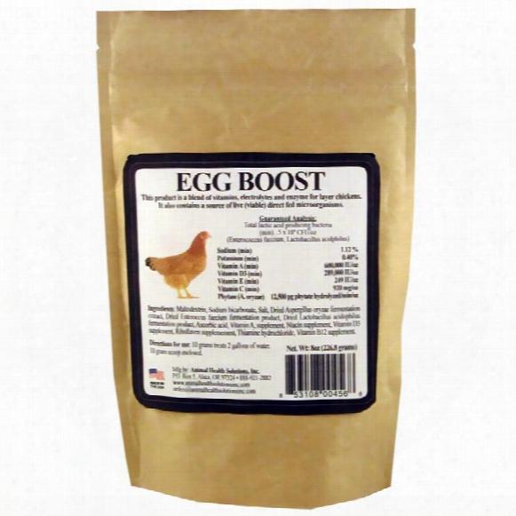 Egg Boost (8 Oz)