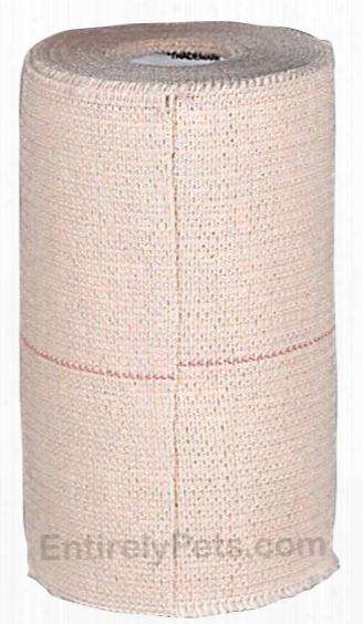 Elastiant - Elastic Adhesive Bandage (4 In X 2.5yds)