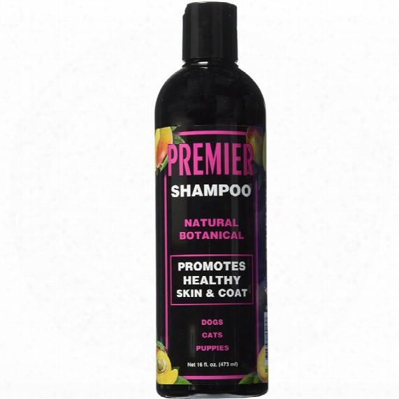 Eqyss Premier Pet Shampoo (16 Fl Oz)