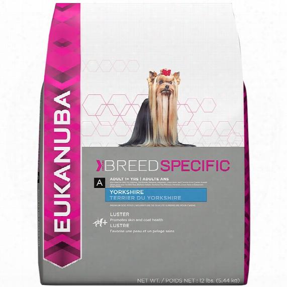 Eukanuba Adult Breed Specific Dog Food - Yorkshire Terrier (10 Lb)