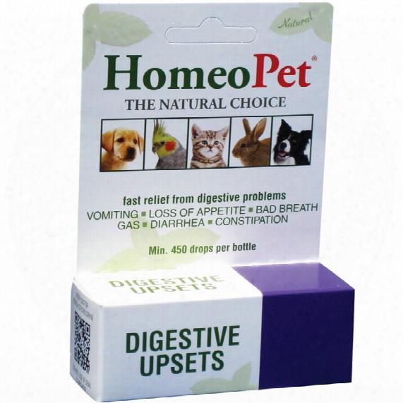 Homeopet Digestive Upset (15ml)