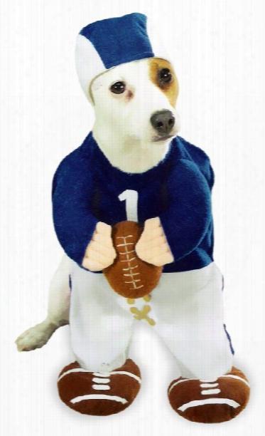 Football Fever Dog Costume - Xsmall