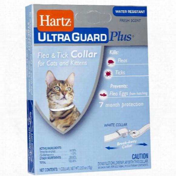 Hartz Ultraguard Plus Flea & Tick Collar - Cat
