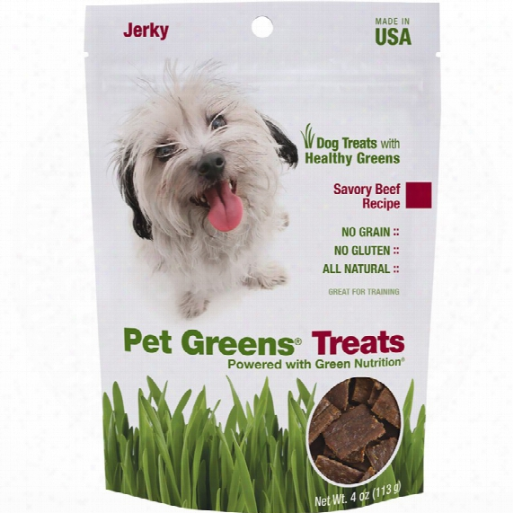 Pet Greens Jerky Dog Treats Savory Beef (4 Oz)