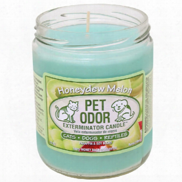 Pet Odor Exterminator Candle - Honeydew Melon Jar (13 Oz)