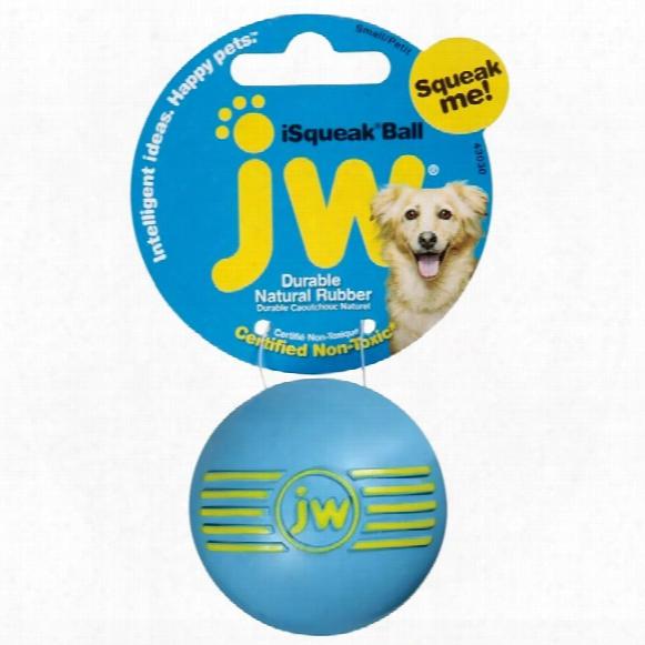 Jw Pet Isqueak Ball - Small (assorted)