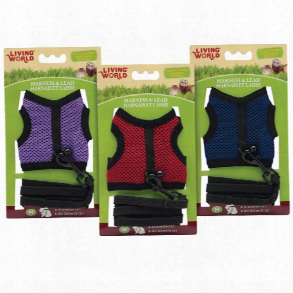 Living World Harness/lead Medium Assorted Colors