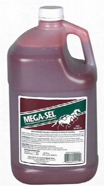 Mega-sel Selenium + Vitamin E (gallon)