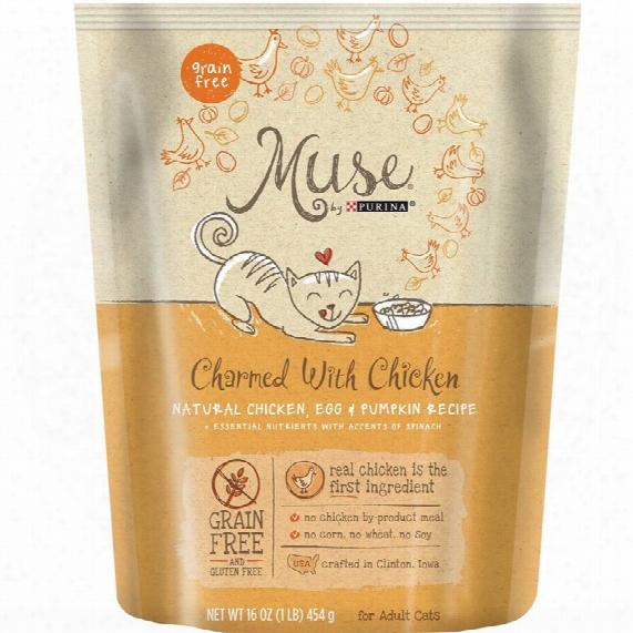 Muse Chicken, Egg & Pumpkin Cat Dry Food (16 Oz)