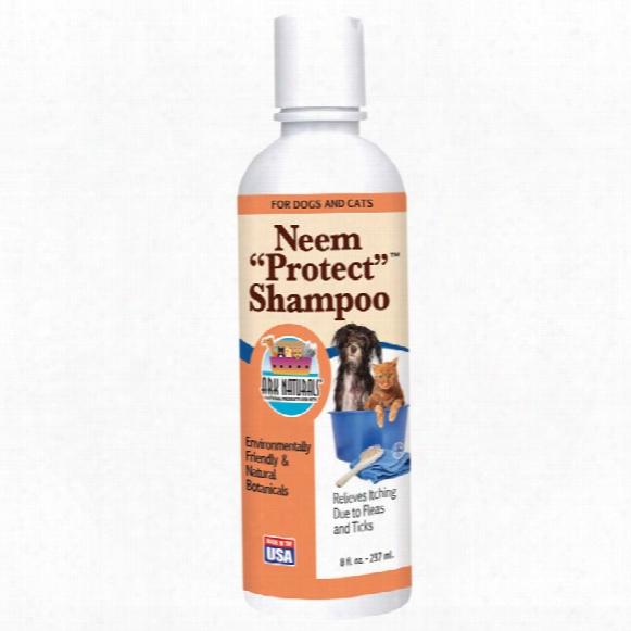 """Ark Naturals Neem """"protect"""" Shampoo (8 Fl Oz)"""