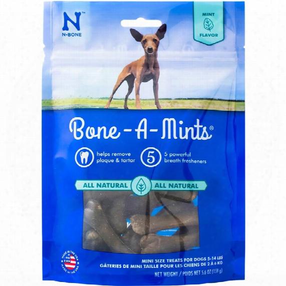 Bone A Mint Wheat Free - Mini (16-pack)
