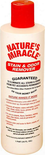 Nature's Miracle Stain & Odor Remover (16 Oz)