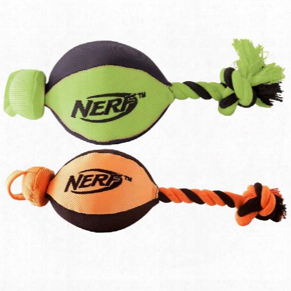 Nerf Dog Trackshot Launcuer (assorted)