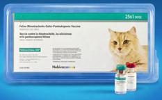 Nobivac Feline 3-hcp (25 Dose)