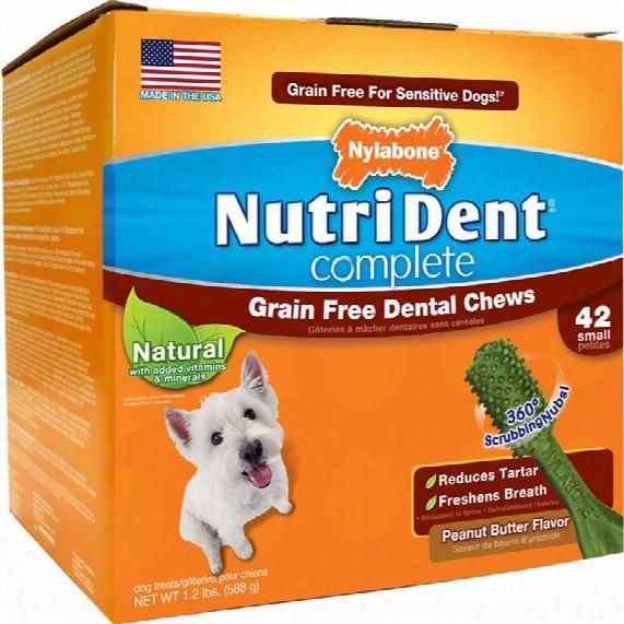 Nutri Dent Grain Free Dental Chew Peanut Butter - Small (42 Count)