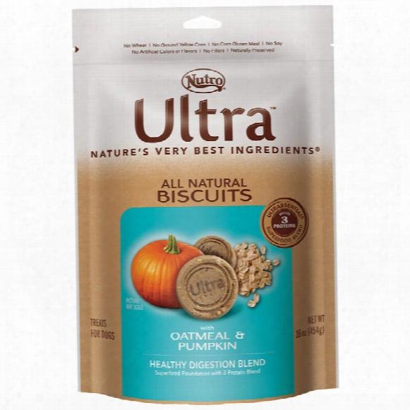 Nutro Ultra Pumpkin & Oatmeal Dog Biscuits (16 Oz)