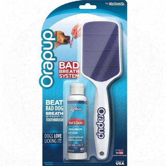 Orapup Brush Starter Kit