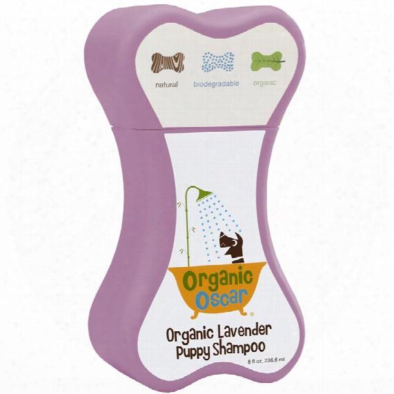 Organic Oscar Lavender Puppy Shampoo (8 Fl Oz)
