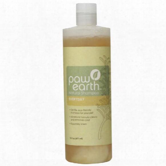 Paw Earth Natural Shampoo - Everyday (16 Fl Oz)
