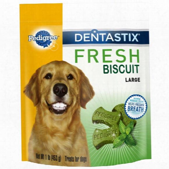 Pedigree Dentastix Fresh Biscuit - Large (1 Lb)
