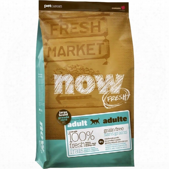 Petcurean Now Fresh Large Breed Adult Dog Food (12 Lb)