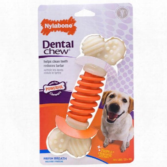 Nylabone Pro Action Dental Dog Chew - Large