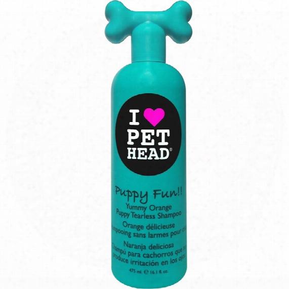 Puppy Fun Yummy Orange Puppy Tearless Shampoo (16 Oz)
