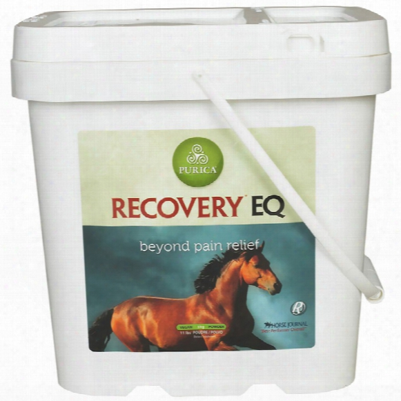 Recovery Eq (11 Lb.)