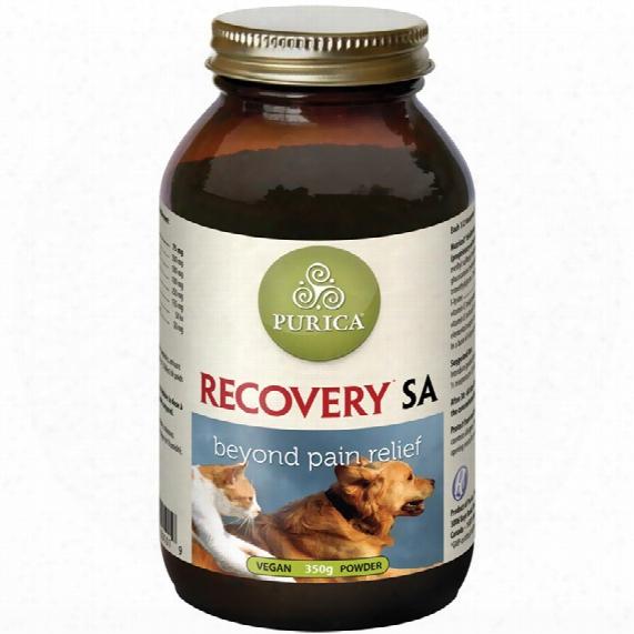 Recovery Sa Powder - 350 G