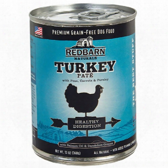 Redbarn Pate Healthy Digestion Dog Food - Turkey (13 Oz)