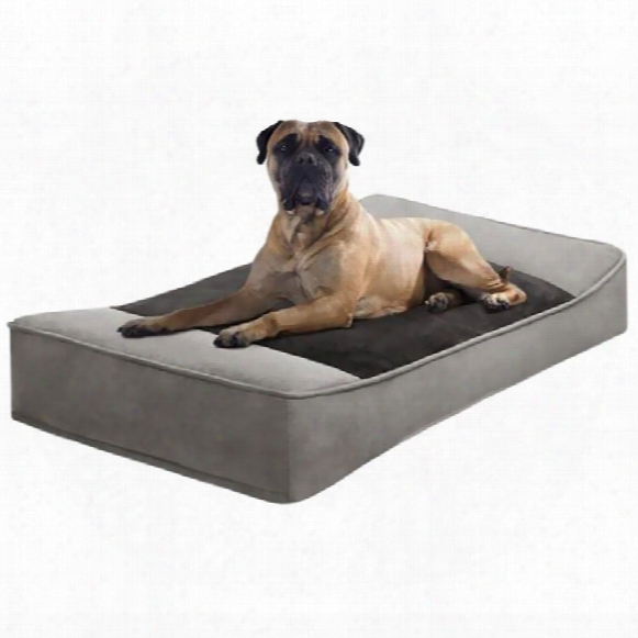 """Jla Pets Shadow Faux Suede Pillow Top Stretch Lounger - Green/chocolate (42xx24"""")"""