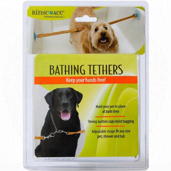 Rinse Ace Pet Bathing Tether