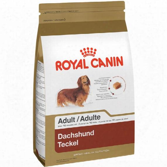 Royal Canin Breed Health Nutrition Dachshund (10 Lb)