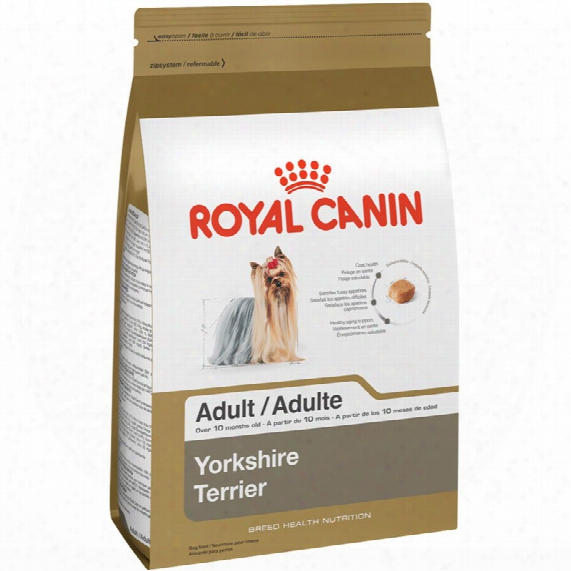 Roya Canin Breed Health Nutrition Yorkshire Terrier (10 Lb)