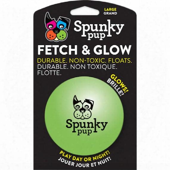 Spunky Pup Fetch & Glow Ball - Large