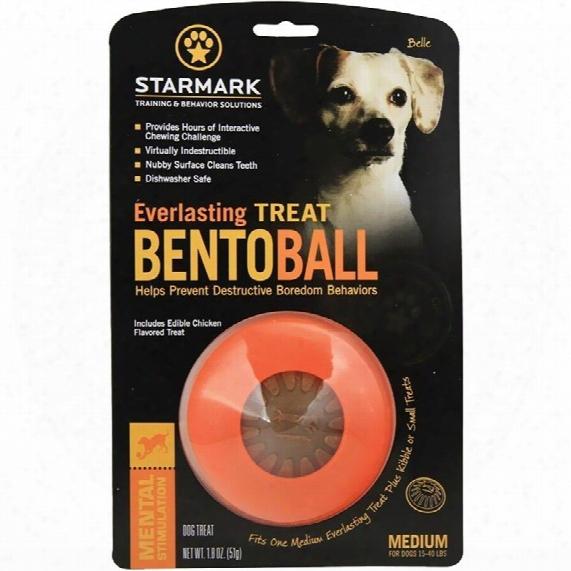 Starmark Everlasting Bento Ball - Medium