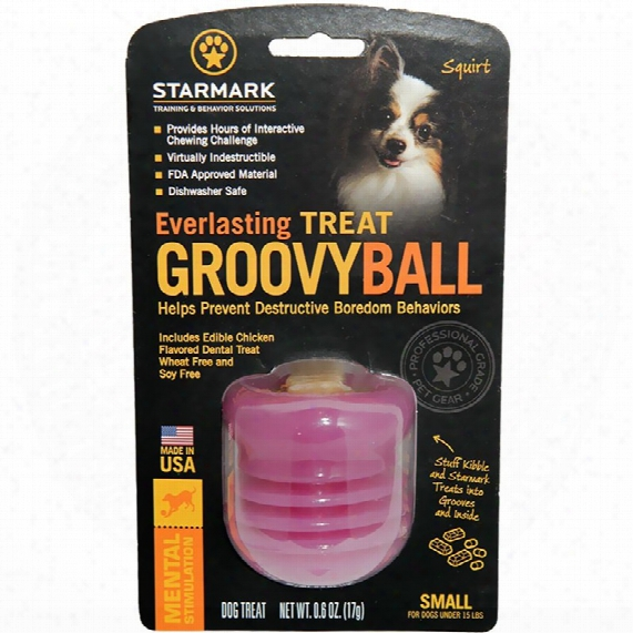 Starmark Everlasting Groovy Ball - Small