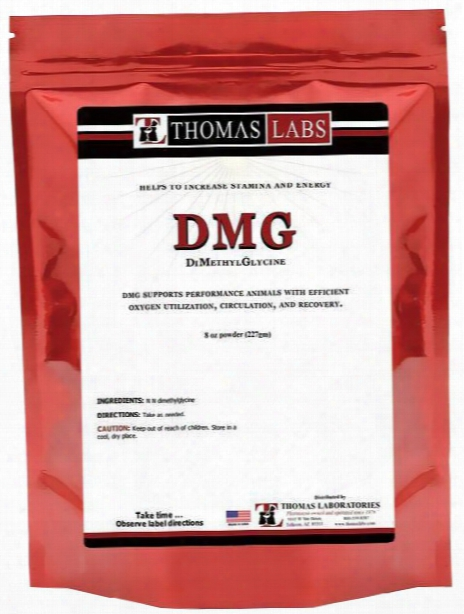 Thomas Labs Dmg Pure Powder (8 Oz)