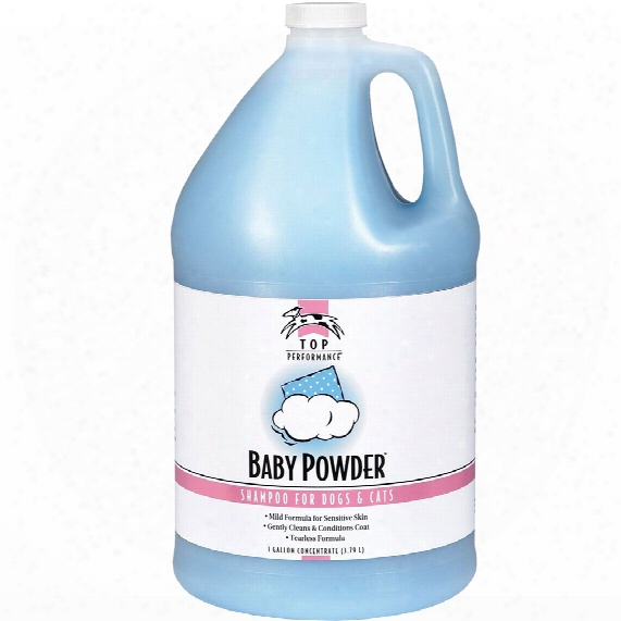 Top Performance Baby Powder Shampoo (gallon)