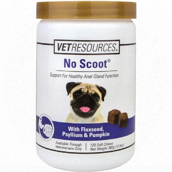 Vetresources No Scoot (65 Soft Chew)