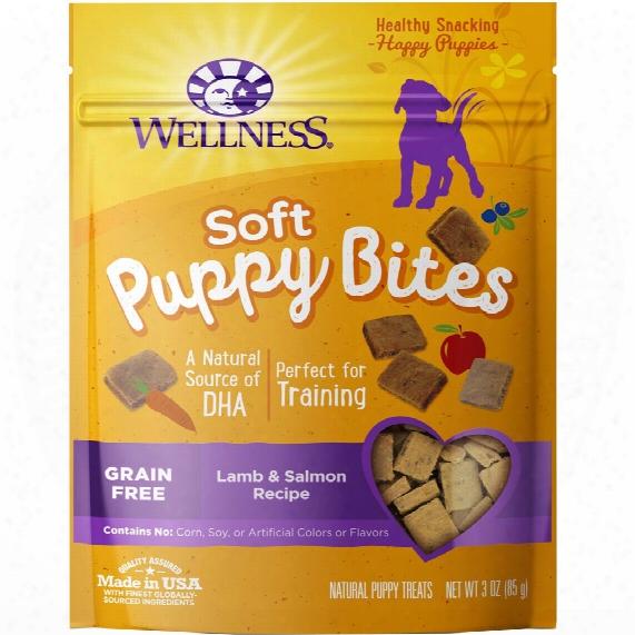 Wellness Puppy Bites - Lamb & Salmon (3 Oz)