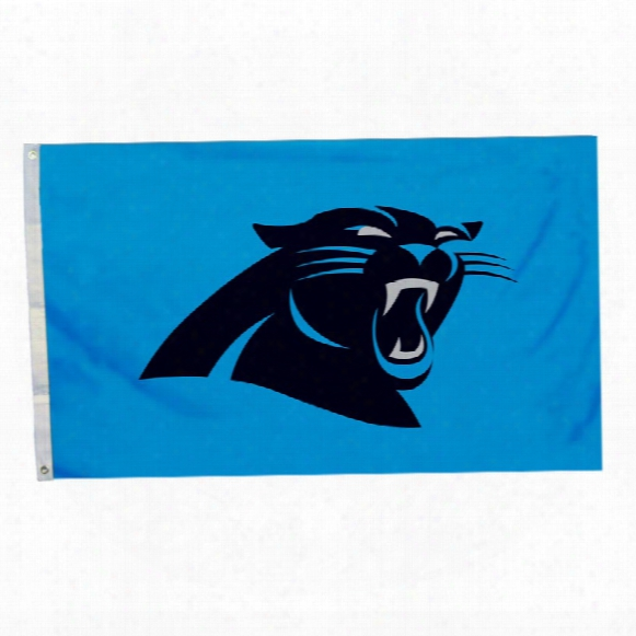 Craolina Panthers 3' X 5' Team Logo Flag