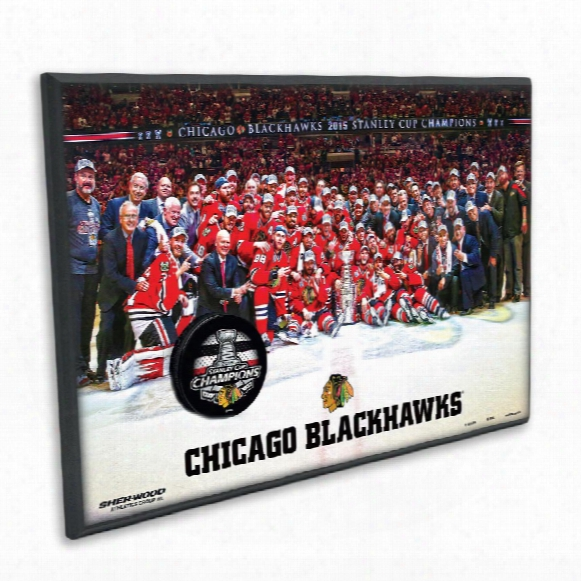 Chicago Blackhawks 2015 Stanley Cup Champions Laminated Team Picture & Replica