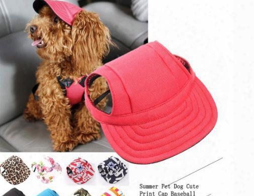 Summer Pet Dog Cute Print Cap Baseball Hat Small Dog Outdoor Hat Fallinlovers