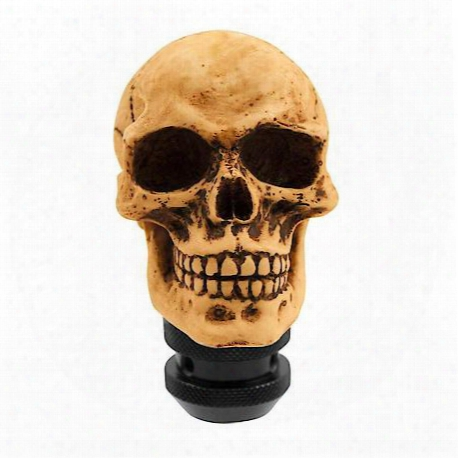Lifelike Skull Manual Shift Knob