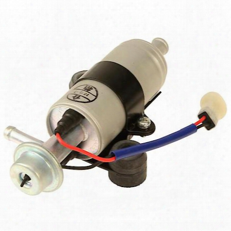 Genuine Fuel Pump - E300030248oes