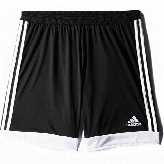 Tastigo 15 Drydye Shorts - Mens