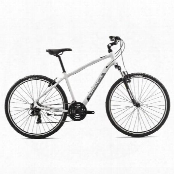 Comfort 30 Bike - 2017