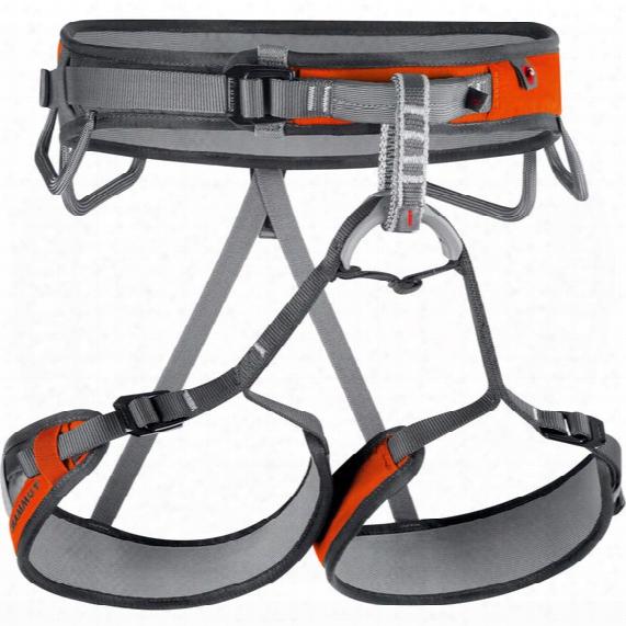 Ophira 3 Slide Climbing Harnesses