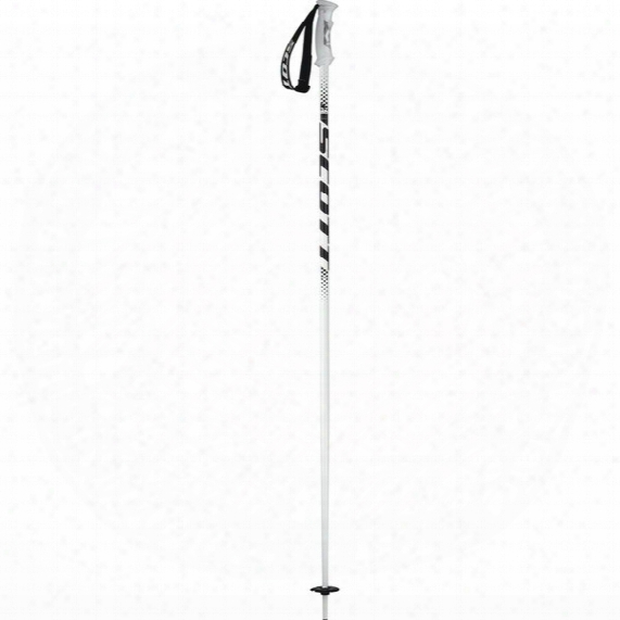 540 Ski Pole